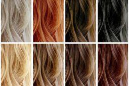 [Artículo] El tono del cabello evidencia rasgos de personalidad